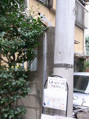 2011 11.13 09.JPG